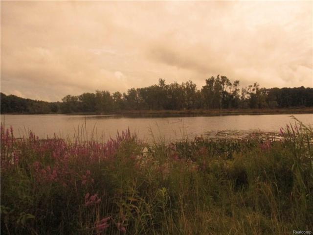 Buckhorn Lake Road, Holly, MI 48442 (MLS #217074347) :: The John Wentworth Group