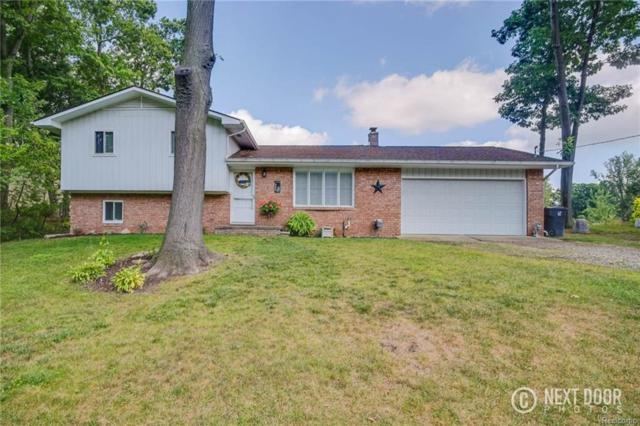 4356 Rurik Dr, Howell, MI 48843 (MLS #217074452) :: The John Wentworth Group