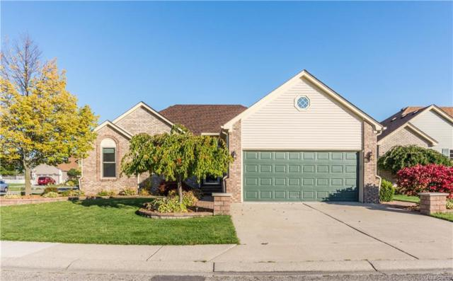 26372 Rosebriar Dr, Chesterfield, MI 48051 (MLS #217084272) :: The Tom Lipinski Team at Keller Williams Lakeside Market Center