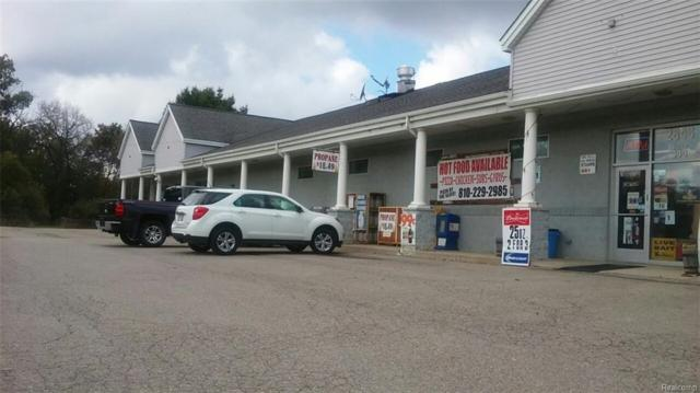 2848 S Old Us Highway 23, Brighton, MI 48114 (MLS #217093202) :: The John Wentworth Group