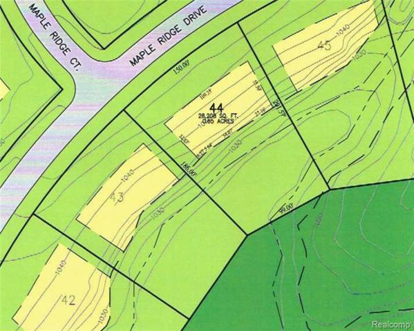 7513 Maple Ridge Drive, Independence Twp, MI 48346 (MLS #217099164) :: Kelder Real Estate Group