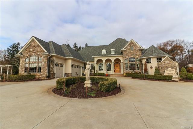 3434 High Hillcrest Dr, Howell, MI 48843 (MLS #217104571) :: The John Wentworth Group