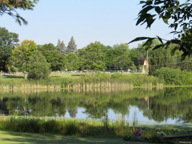222 East Rd, Holly, MI 48442 (MLS #217107215) :: The John Wentworth Group