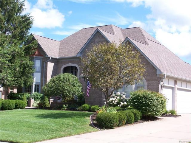 1232 Creek View Dr, Rochester, MI 48307 (MLS #217108166) :: The Peardon Team