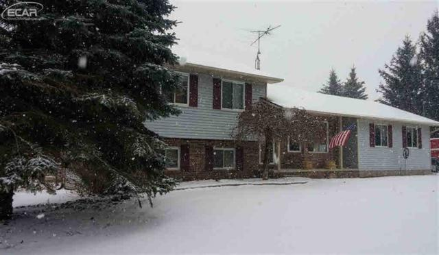 4167 Julie Kim Ln, Goodrich, MI 48438 (MLS #30071553) :: The John Wentworth Group