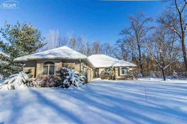 7480 Majestic Wood Dr, Linden, MI 48451 (MLS #30071575) :: The John Wentworth Group