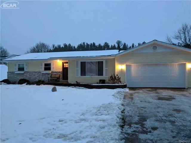 5181 Lahring Rd, Linden, MI 48451 (MLS #30071791) :: The John Wentworth Group