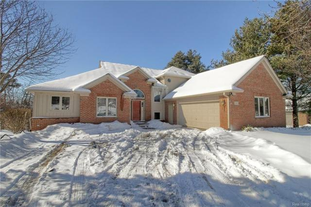 8145 Orchardview Dr, Washington, MI 48095 (MLS #218013035) :: The Peardon Team