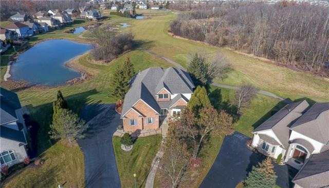 10225 Hillview Crt, Grand Blanc, MI 48439 (MLS #218021150) :: The John Wentworth Group