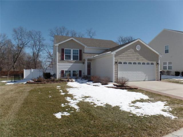 3744 Amber Oaks Dr, Howell, MI 48855 (MLS #218022235) :: The John Wentworth Group