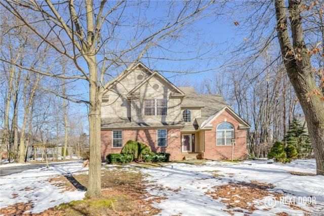 1184 Westwood Shore Dr, Howell, MI 48843 (MLS #218022464) :: The John Wentworth Group