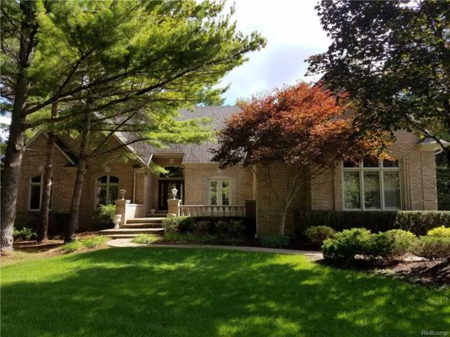 5261 Hidden Pines Dr, Brighton, MI 48116 (MLS #218023606) :: The John Wentworth Group