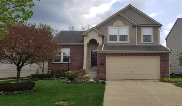 1253 Callaway Crt, Howell, MI 48843 (MLS #218044232) :: The John Wentworth Group