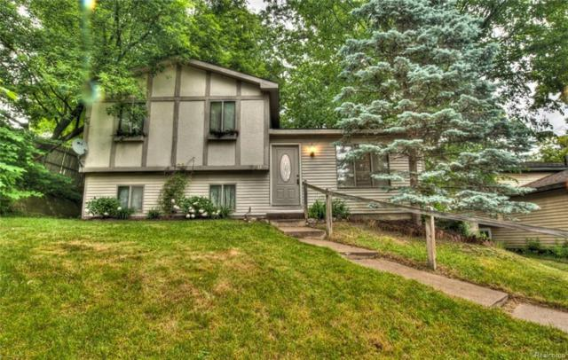 920 Old Hickory Ln, Lake Orion, MI 48362 (MLS #218052008) :: The John Wentworth Group