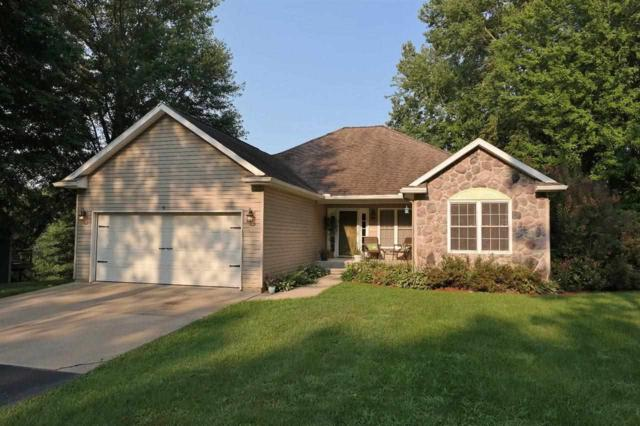 9110 Pineview Lake, Linden, MI 48451 (MLS #100003619) :: The John Wentworth Group