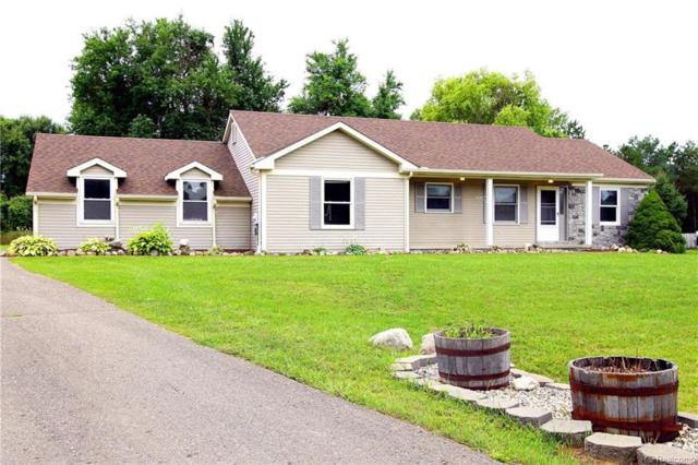8938 Mccoll Side Rd, Brighton, MI 48116 (MLS #218080150) :: The John Wentworth Group
