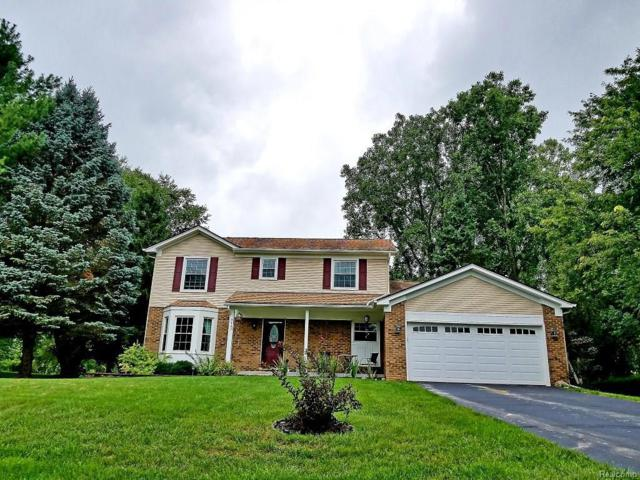 9062 Scenic Dr, Brighton, MI 48114 (MLS #218079764) :: The John Wentworth Group
