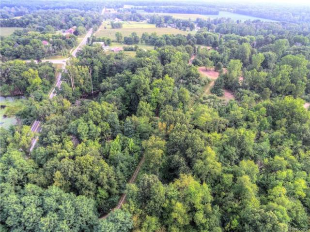 Holly Rd, Holly, MI 48442 (MLS #218080163) :: The John Wentworth Group