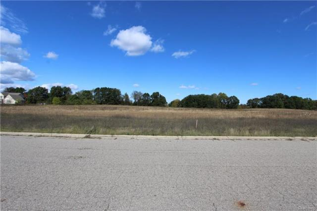 Stone Garden Drive Dr, Howell, MI 48843 (MLS #218080329) :: The John Wentworth Group