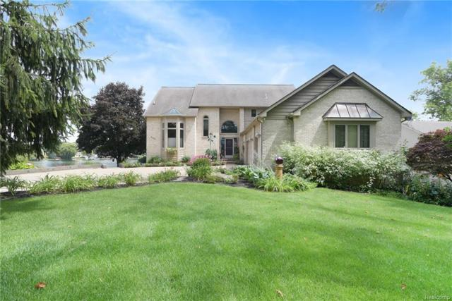 8060 Pine Ranch Dr, Brighton, MI 48114 (MLS #218099908) :: The John Wentworth Group