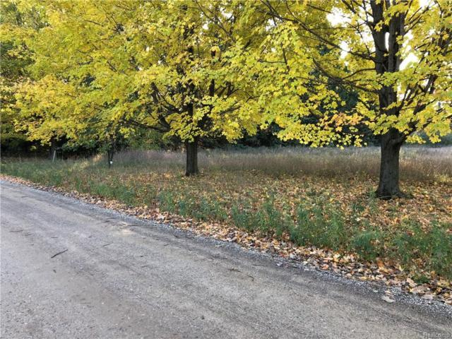 0 Fisher (Lot B) Crt, Howell, MI 48855 (MLS #218103483) :: The John Wentworth Group