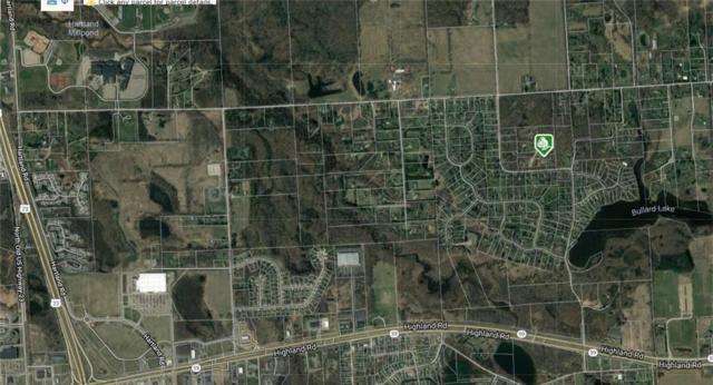 2728 Bullard, Hartland, MI 48353 (MLS #218114937) :: The John Wentworth Group