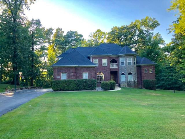 15456 Oak Hollow Dr, Holly, MI 48442 (MLS #218116455) :: The John Wentworth Group