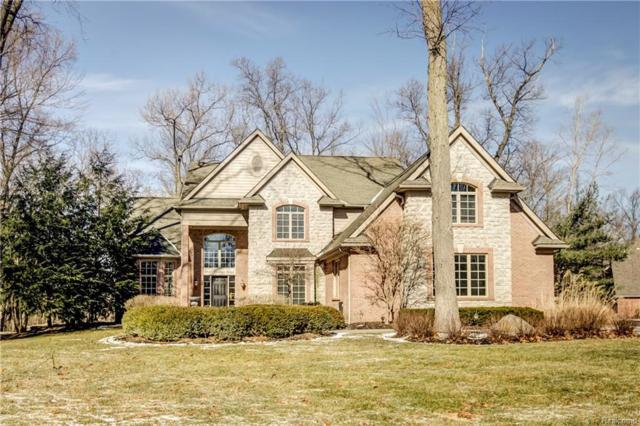 5549 Timber Bend Dr, Brighton, MI 48116 (MLS #219008582) :: The John Wentworth Group