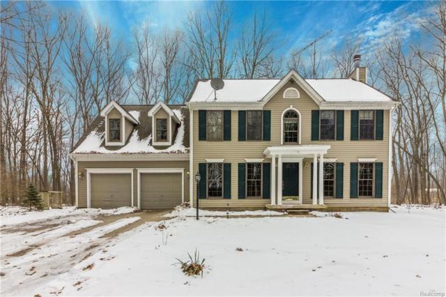 14465 N Holly Rd, Holly, MI 48442 (MLS #219013795) :: The John Wentworth Group
