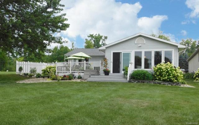 10122 Walnut Shores Dr, Fenton, MI 48430 (MLS #219014253) :: The John Wentworth Group