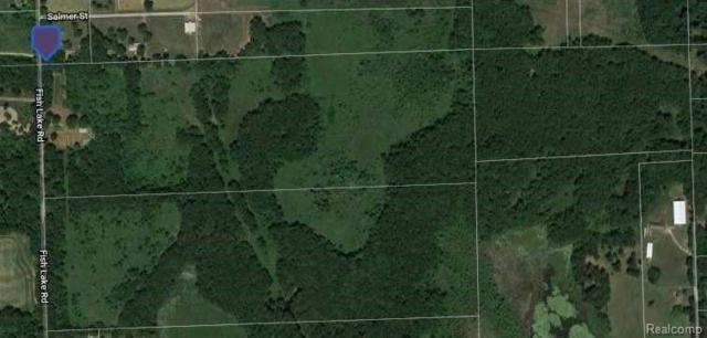 8238 Fish Lake Rd, Holly, MI 48442 (MLS #219015219) :: The John Wentworth Group