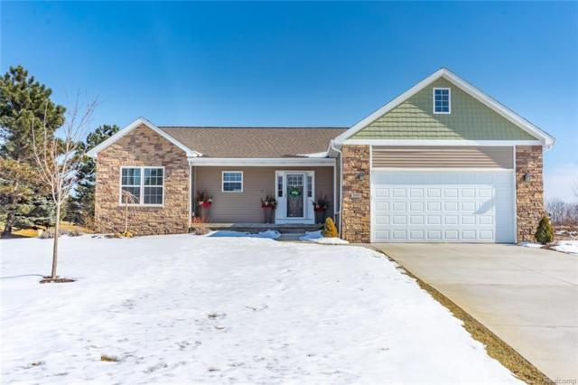 13007 Lia Crt, Linden, MI 48451 (MLS #219014763) :: The John Wentworth Group