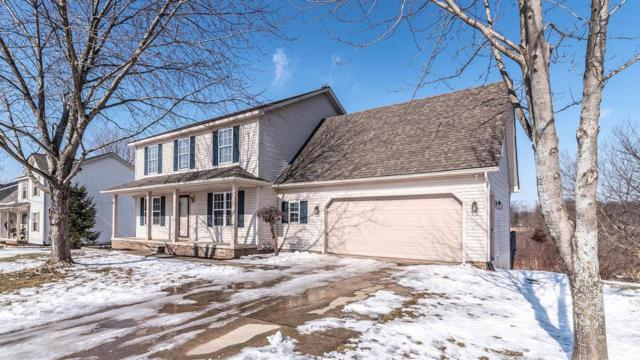 385 Brentwood Dr, Pinckney, MI 48169 (MLS #3263077) :: The John Wentworth Group