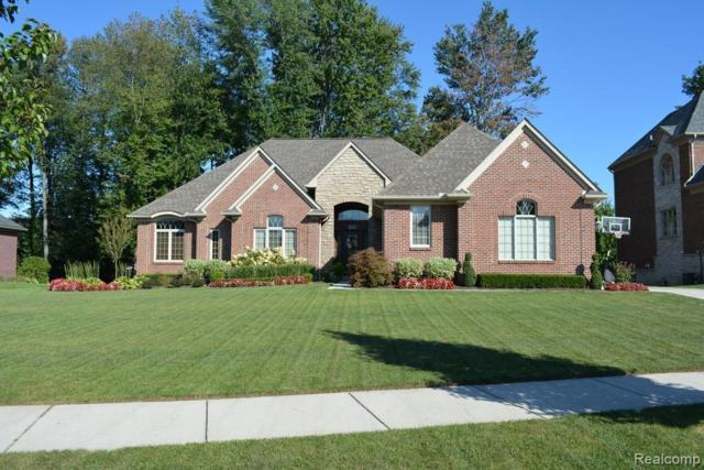 52778 Tuscany Grove Dr, Shelby Twp, MI 48315 (MLS #219020057) :: The John Wentworth Group