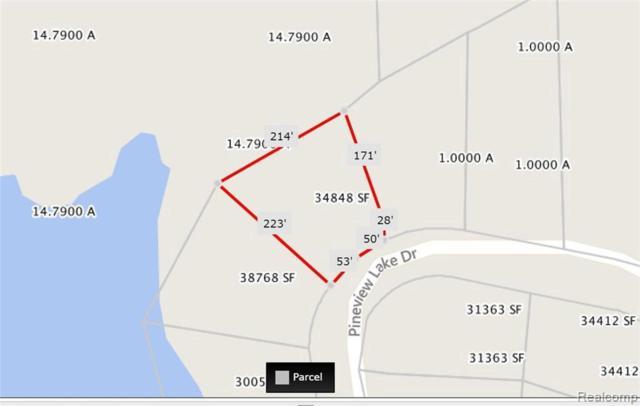 0 Pineview Lake Dr, Linden, MI 48451 (MLS #219033669) :: The John Wentworth Group