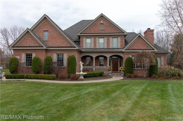 2730 Turning Leaf Dr, Howell, MI 48843 (MLS #219035377) :: The John Wentworth Group