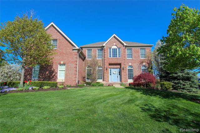 24407 Bellingham Dr, Novi, MI 48374 (MLS #219046182) :: The Tom Lipinski Team at Keller Williams Lakeside Market Center