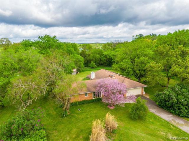 13801 Silver Lake Rd, South Lyon, MI 48178 (MLS #219049254) :: The John Wentworth Group
