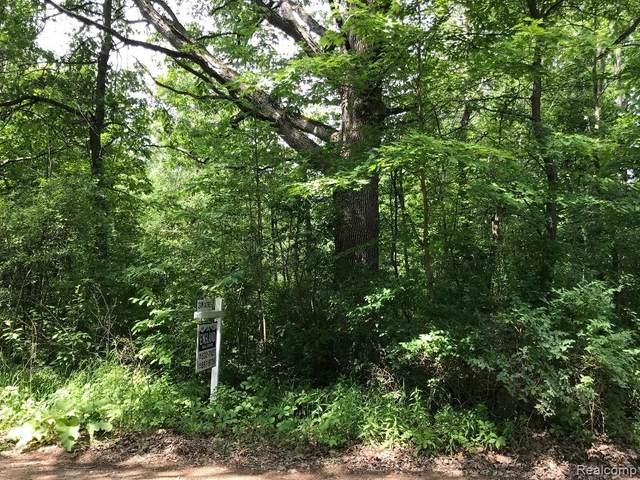 0 Tipsico Lake Rd, Holly, MI 48442 (MLS #219056333) :: The John Wentworth Group