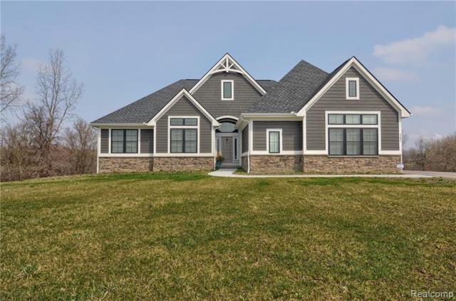 9231 Willowgate, Goodrich, MI 48438 (MLS #219057630) :: The John Wentworth Group