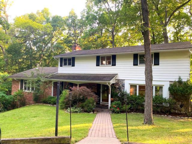 4141 Woodland Dr, Ann Arbor, MI 48103 (MLS #3267147) :: The John Wentworth Group