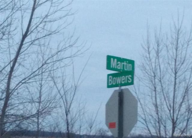 0 Bowers Rd, Capac, MI 48014 (MLS #219070663) :: The Tom Lipinski Team at Keller Williams Lakeside Market Center