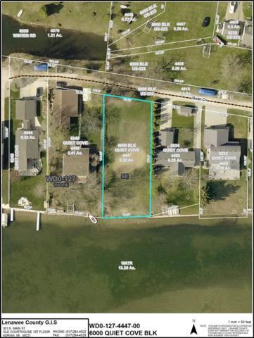 6000 Quiet Cove, Addison, MI 49220 (MLS #201902559) :: The Tom Lipinski Team at Keller Williams Lakeside Market Center