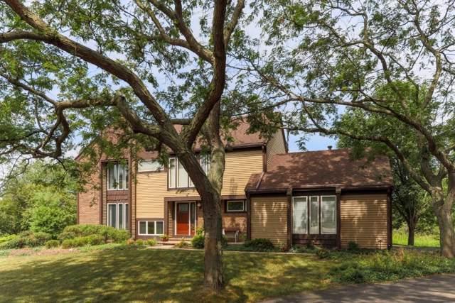 4082 Ramsgate Ct, Ann Arbor, MI 48103 (MLS #3268126) :: The John Wentworth Group