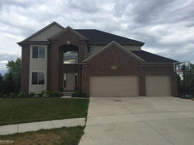 55042 Norman, Macomb, MI 48042 (MLS #31323631) :: The Peardon Team