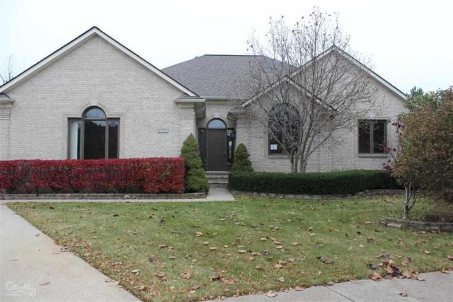 47510 Echo, Shelby, MI 48315 (MLS #31335604) :: The Tom Lipinski Team at Keller Williams Lakeside Market Center