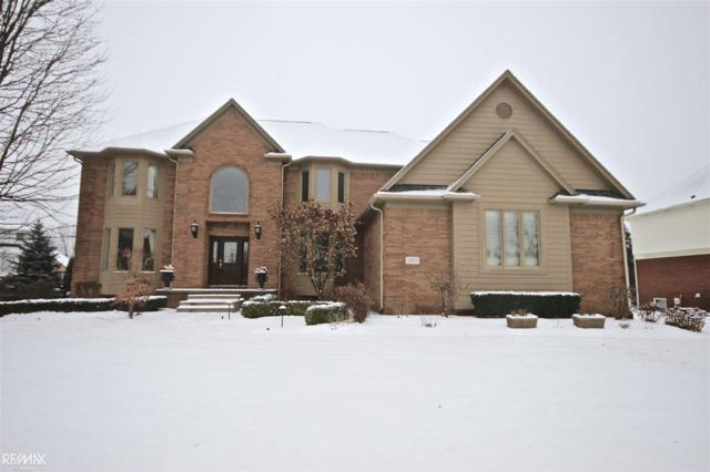 3871 White Tail Dr, Rochester, MI 48306 (MLS #31336723) :: The Peardon Team