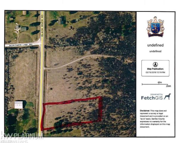 01 VL Black River Rd, Croswell, MI 48422 (MLS #31342735) :: The John Wentworth Group