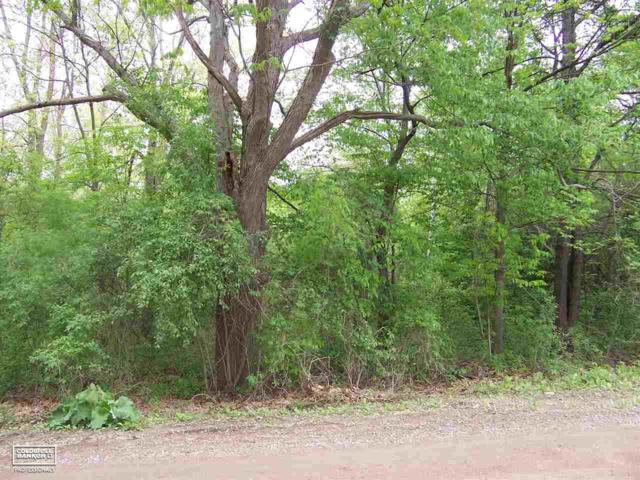 0 Belford Vacant, Holly, MI 48442 (MLS #31348115) :: The John Wentworth Group