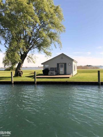 8575 Big Fisher, Harsens Island, MI 48028 (MLS #31350427) :: The John Wentworth Group